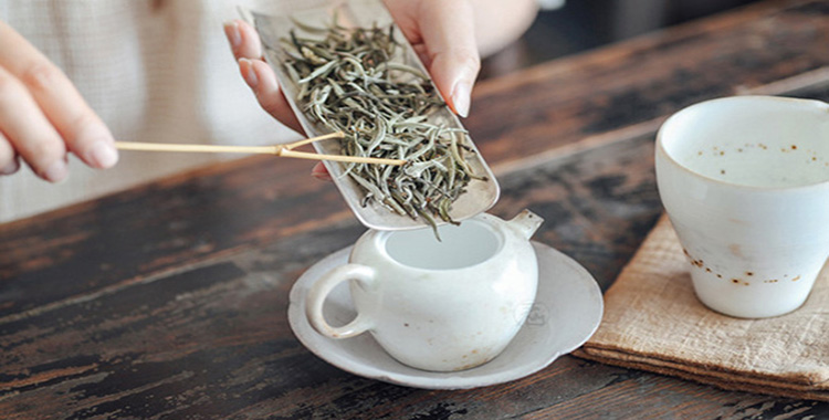茶,撬动你心中的贝壳!2019第5期茶学班5月13日开课,火热报名中……