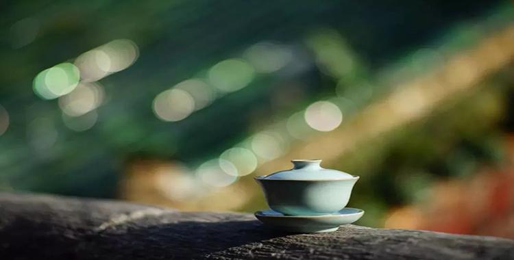 「珠海茶艺培训」盛夏到来,养生首选喝白茶