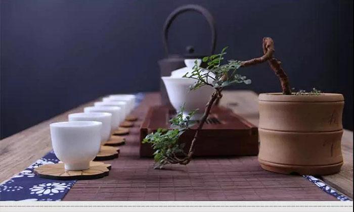 【泸州茶艺培训】茶,是灵魂的家