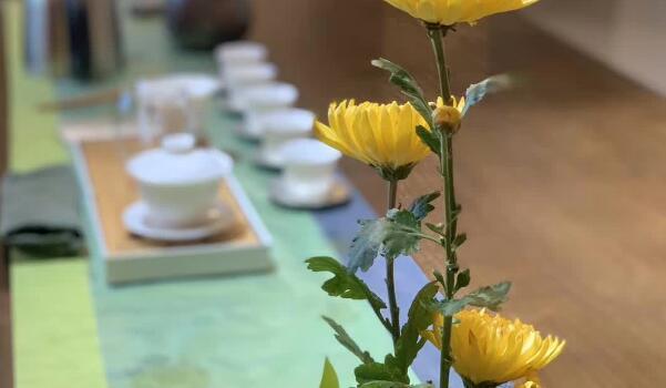 【本周直播预告】相约莫道学堂,学茶,一个找寻自我的过程